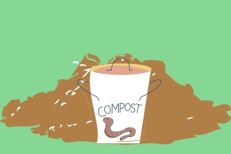 Whot Worms To Choose For Vermicomposing?